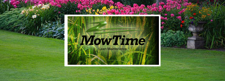 Specials on Lawn Service in St. Charles, MO Loyalty Lawn Care Offers Special Discounts. At Loyalty Lawn Care, we frequently offer a variety of special offers and discounts to those who are in need of experienced lawn care. We have something for everyone, both new and existing customers.