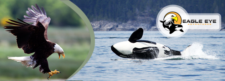Island Daily Deals   Online Coupons & Deals in Nanaimo ...