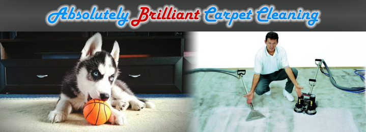 Save 62 On Carpet Cleaning For 2 Rooms With Absolutely